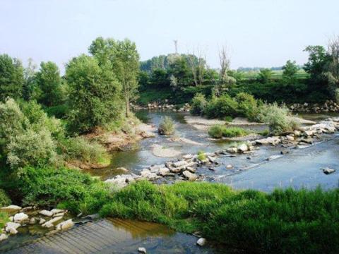 Immagine notizia Carenza idrica del torrente Elvo